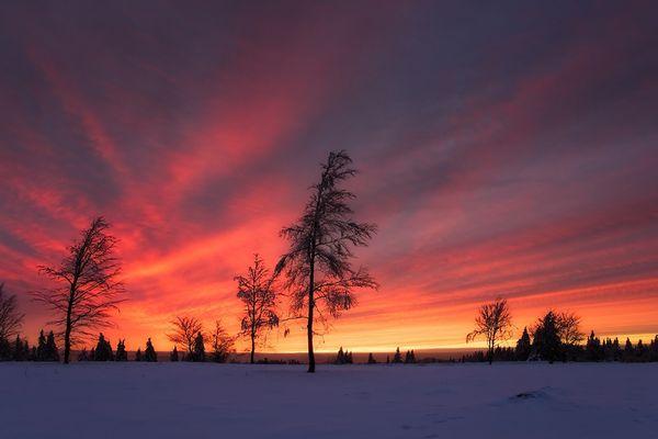 Winterliche Besinnlichkeit