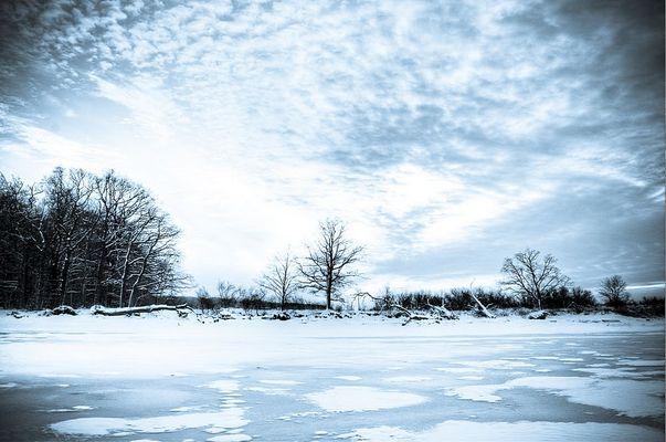 Winterliche Cyanotypie