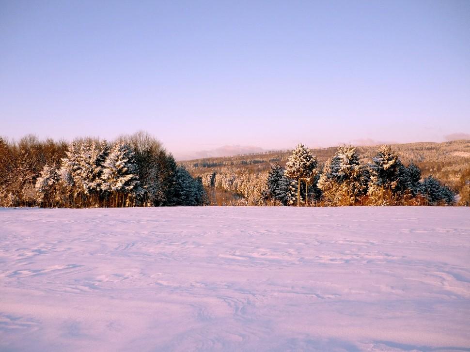 Winterliche Eindrücke