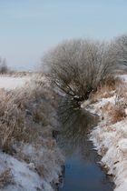 winterliche Elbmarsch