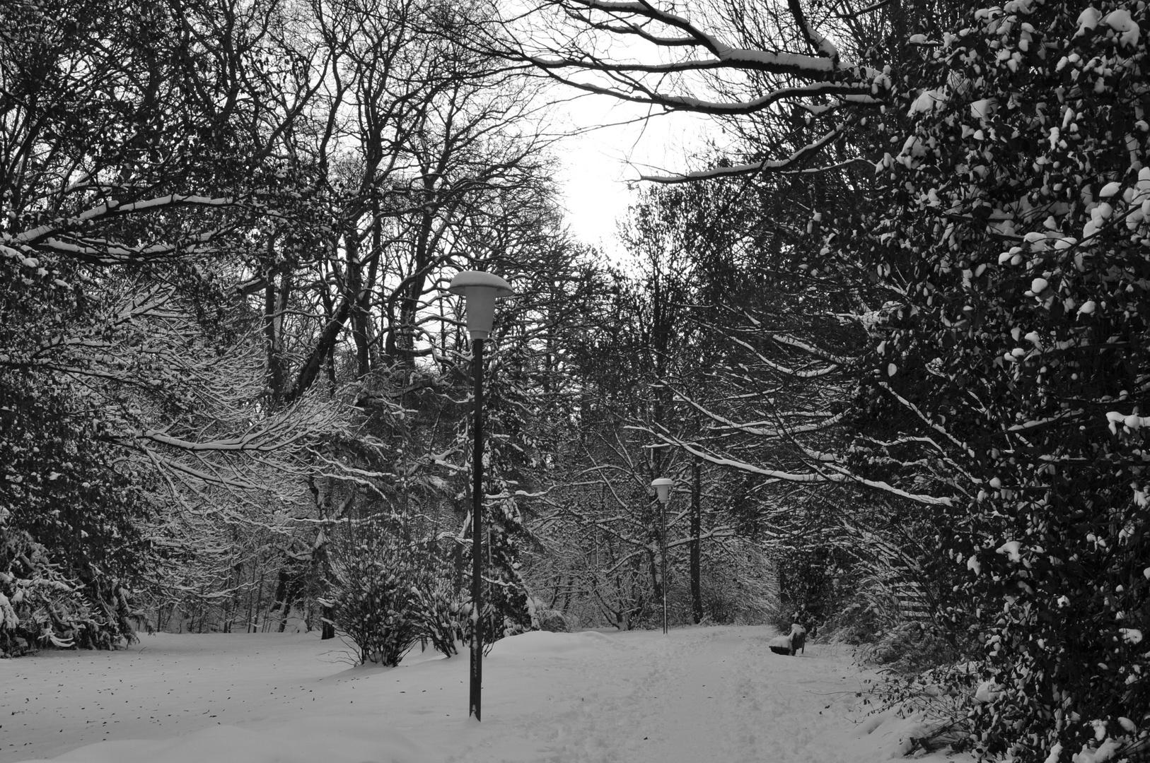 winterliche Parklandschaft