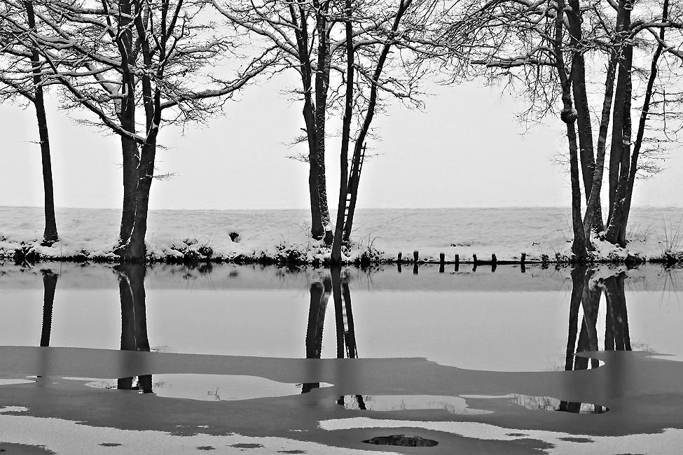 Winterliche Ruhe am Teich