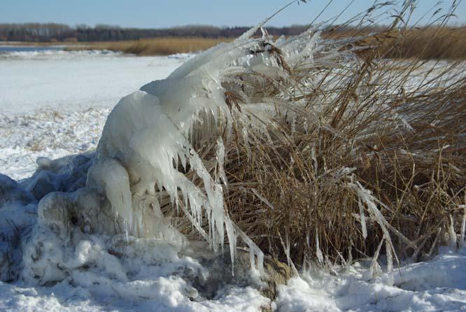 Winterliche Skulptur aus Sturm und Eis