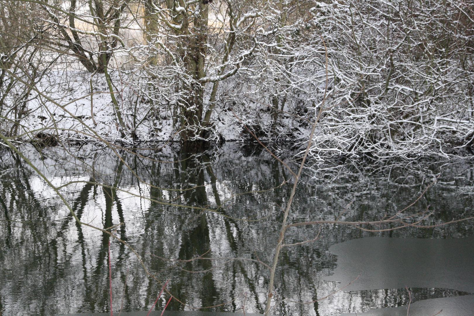 Winterliche Spiegelungen im Wasser