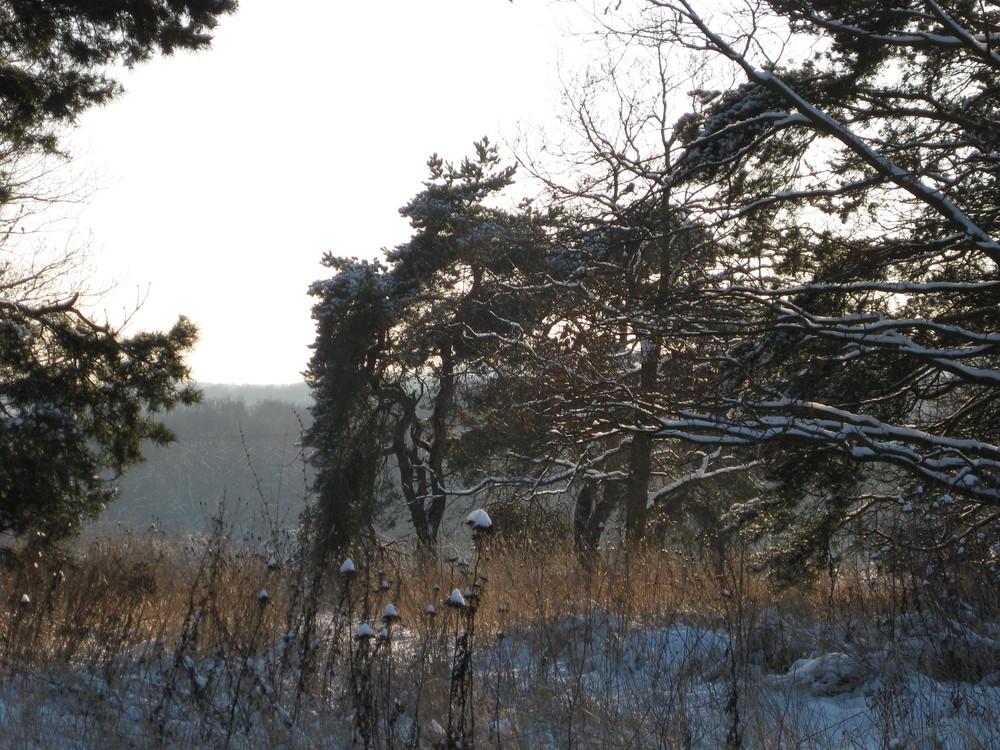 winterliche stimmung 3