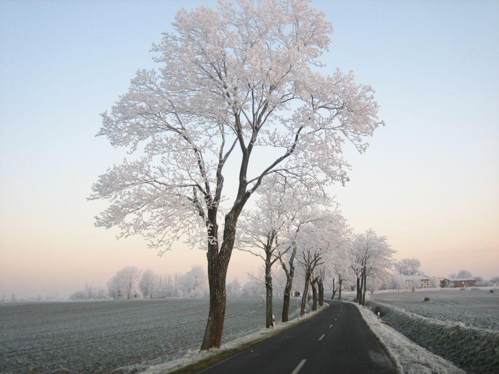 winterliche stimmung in mecklenburg