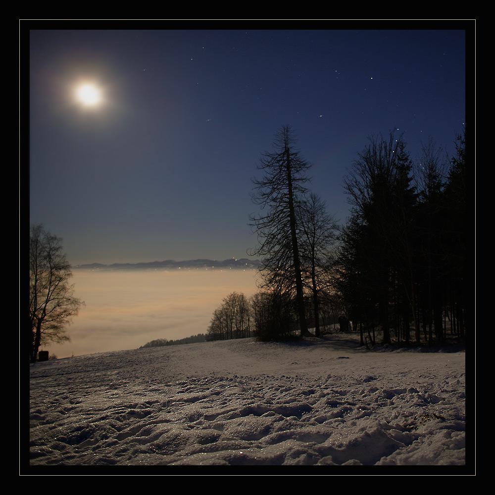 Winterliche Vollmondnacht