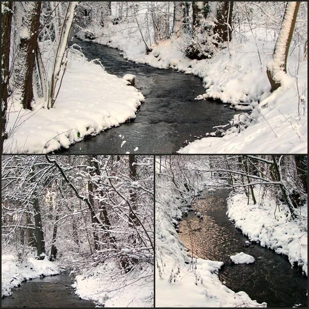 Winterlicher Bachlauf