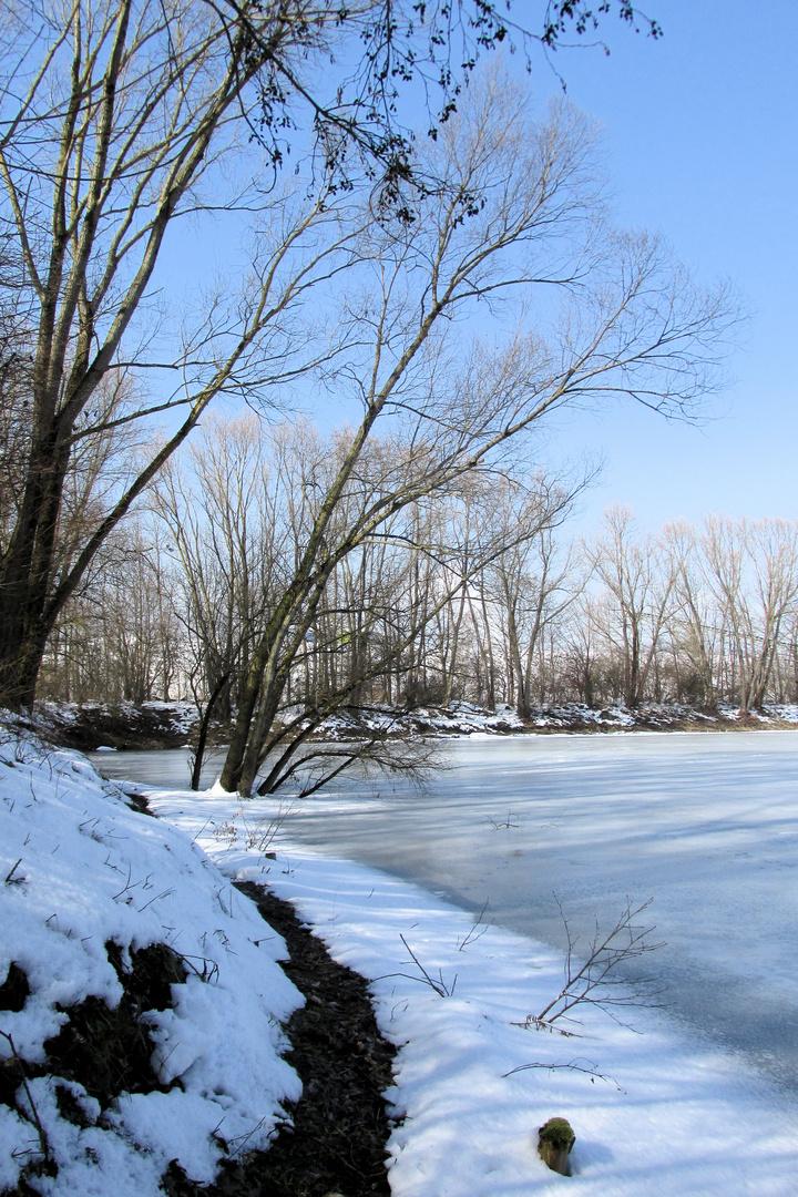 Winterlicher Baggersee