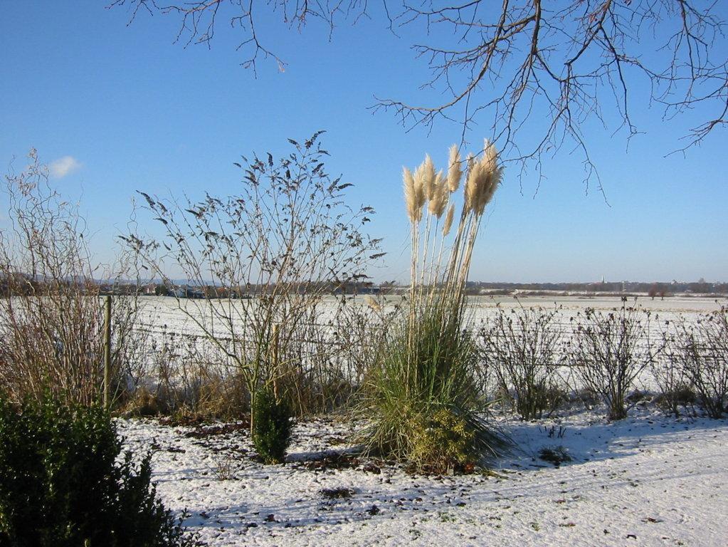 Winterlicher Bauerngarten