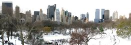 winterlicher Central Park by RonaldUnger