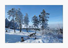 Winterlicher Großer Feldberg