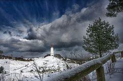Winterlicher Gruß von der Insel Hiddensee