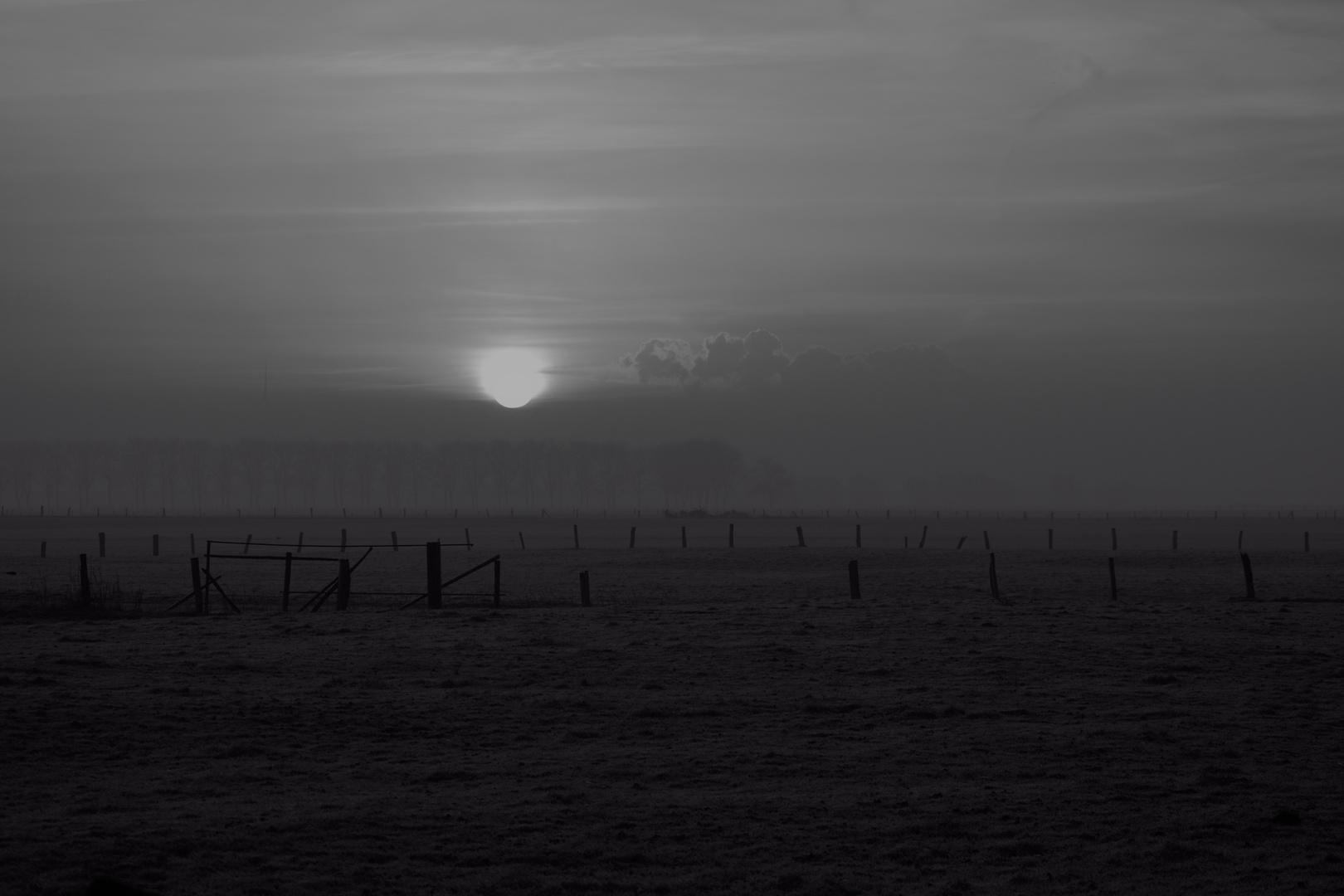 Winterlicher Nebelmorgen