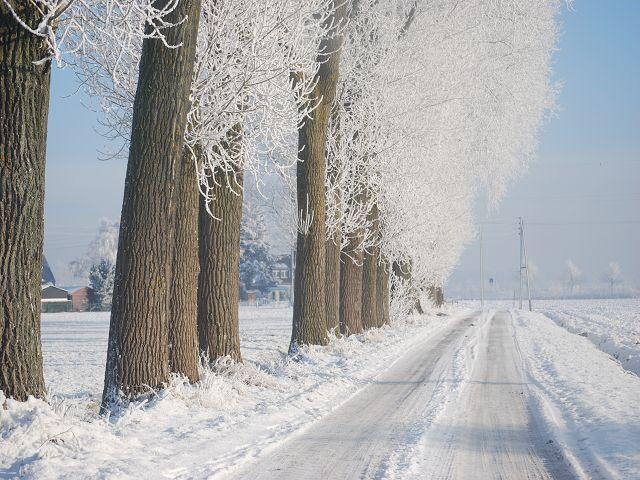 Winterlicher Niederrhein 3