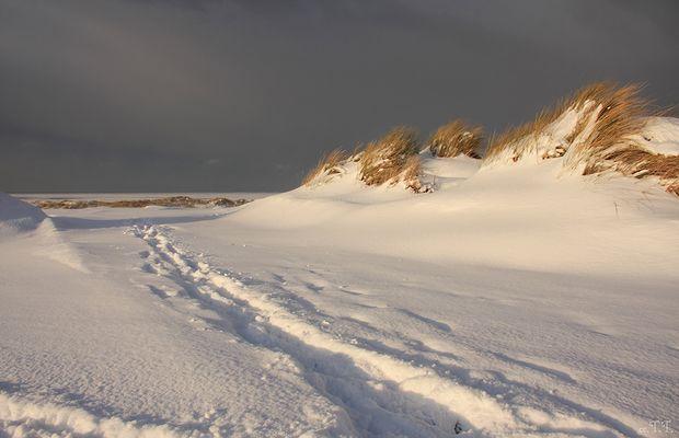 winterlicher Nordstrand