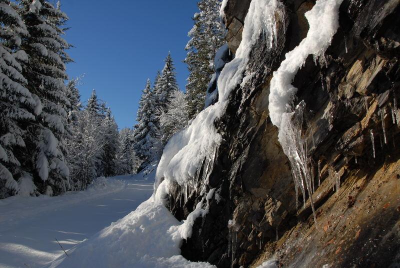 ....winterlicher Pfad hoch über dem Churer Rheintal