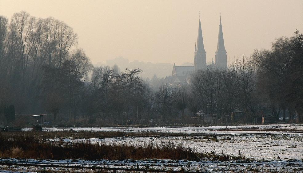 winterlicher Rheinhessendom