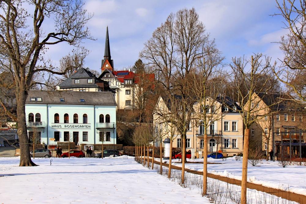 Winterlicher Rosengarten [BF]