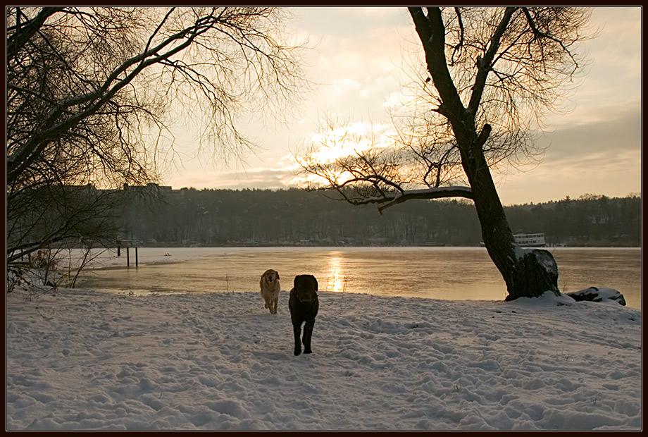 Winterlicher Sonnenaufgang am Stößensee II