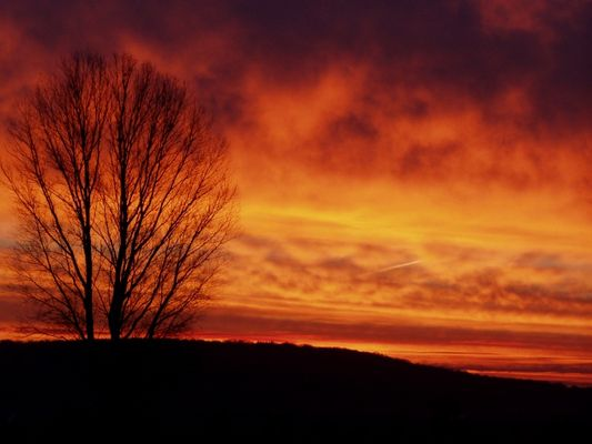 Winterlicher Sonnenaufgang Teil2