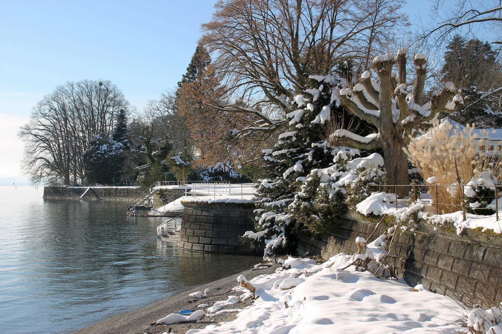 winterliches Bodenseeufer bei Bad Schachen