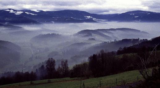 Winterliches Ibachtal (Schwarzwald)