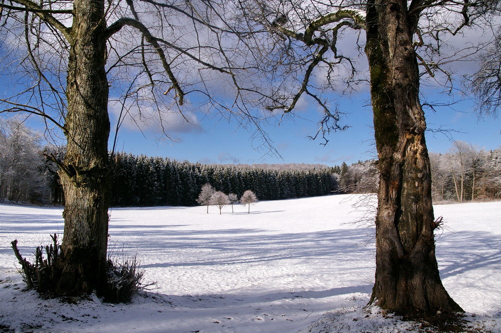 Winterliches Intermezzo