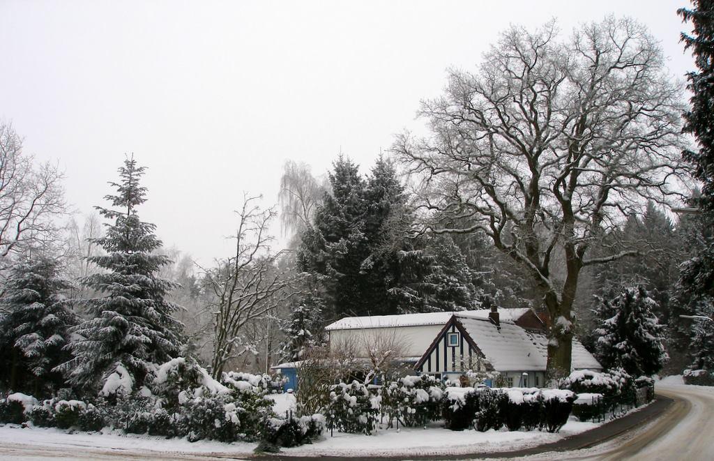 Winterliches Motiv in Hohenlockstedt