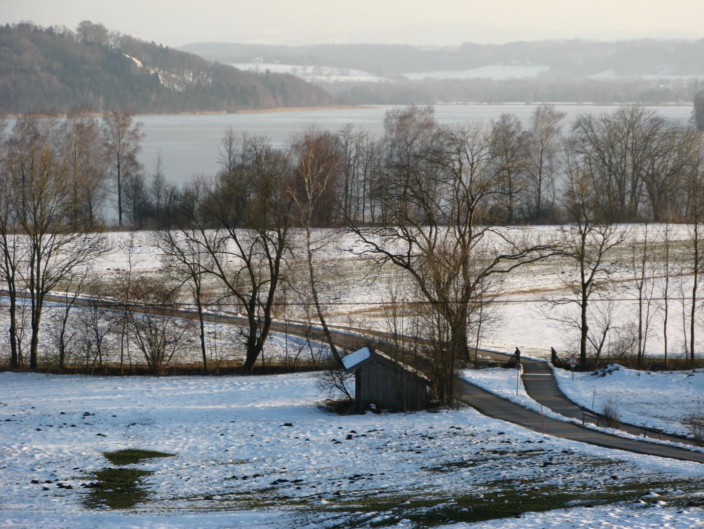 winterliches Nordufer des Tachinger Sees