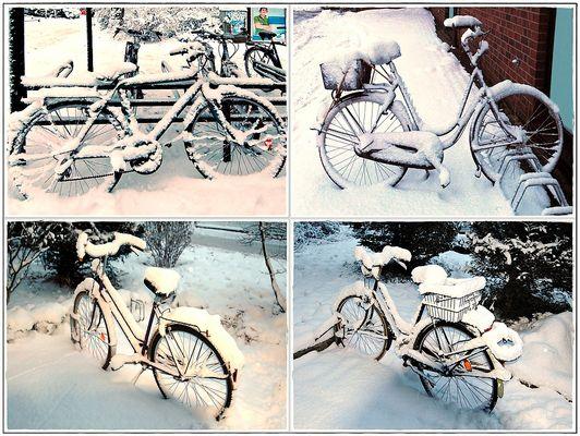 Winterliches Radquartett