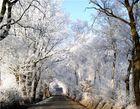 Winterliches Rastede