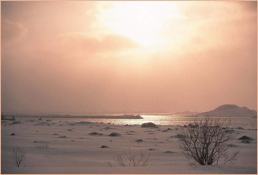 Winterliches-Sonnenlicht