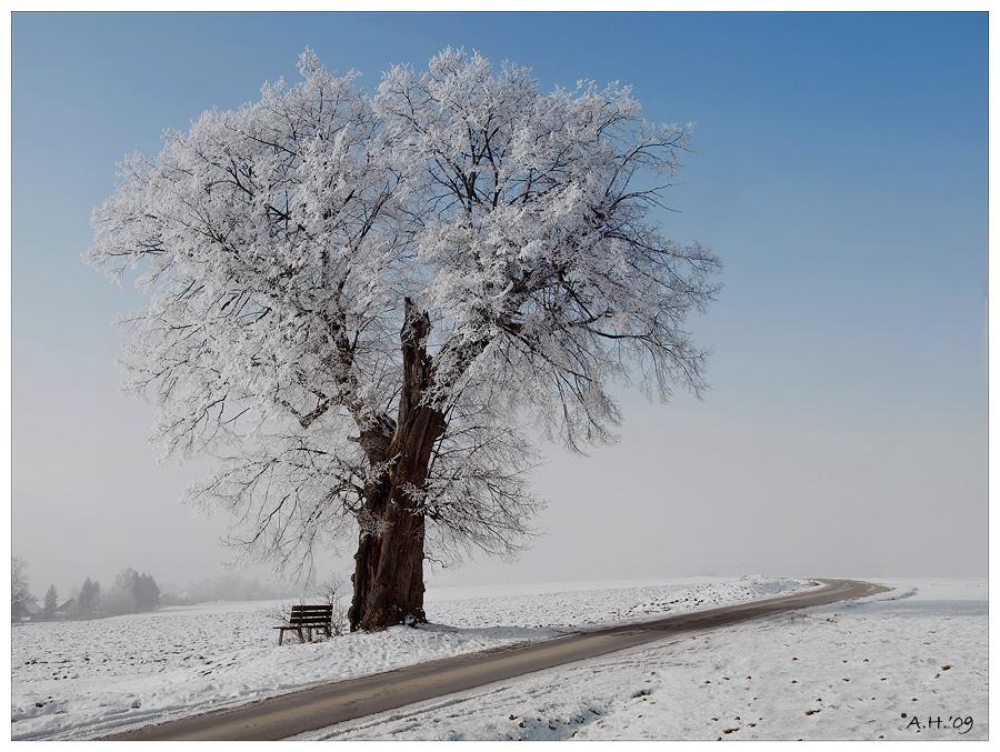 Winterlich(t) (3)