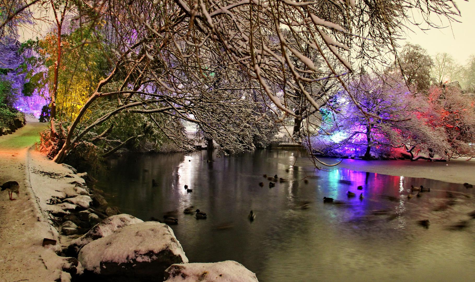 Winterlicht 6