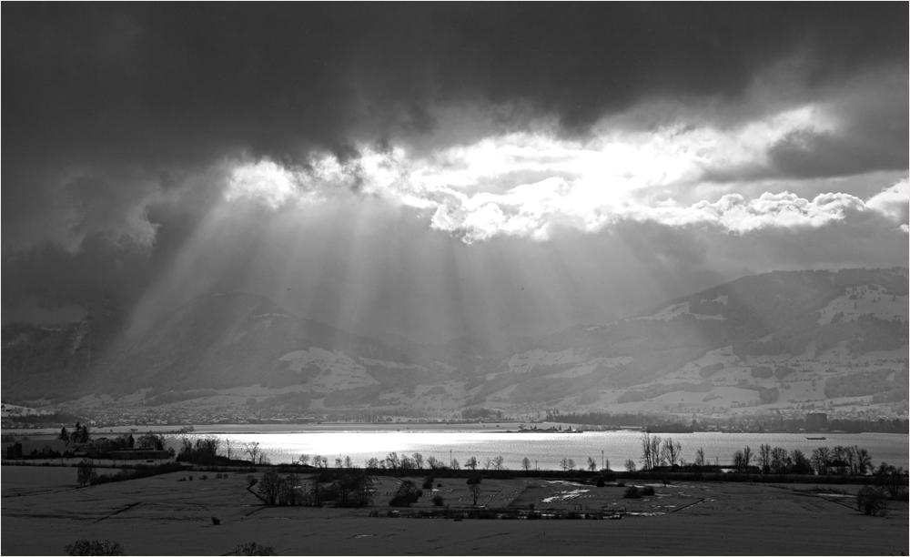 Winterlicht von Verena F.