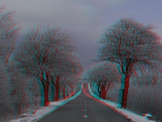 Winterlich(t), noch schnee-und eisfrei. (3D-Bild mit Rot/Cyan-Brille betrachten)