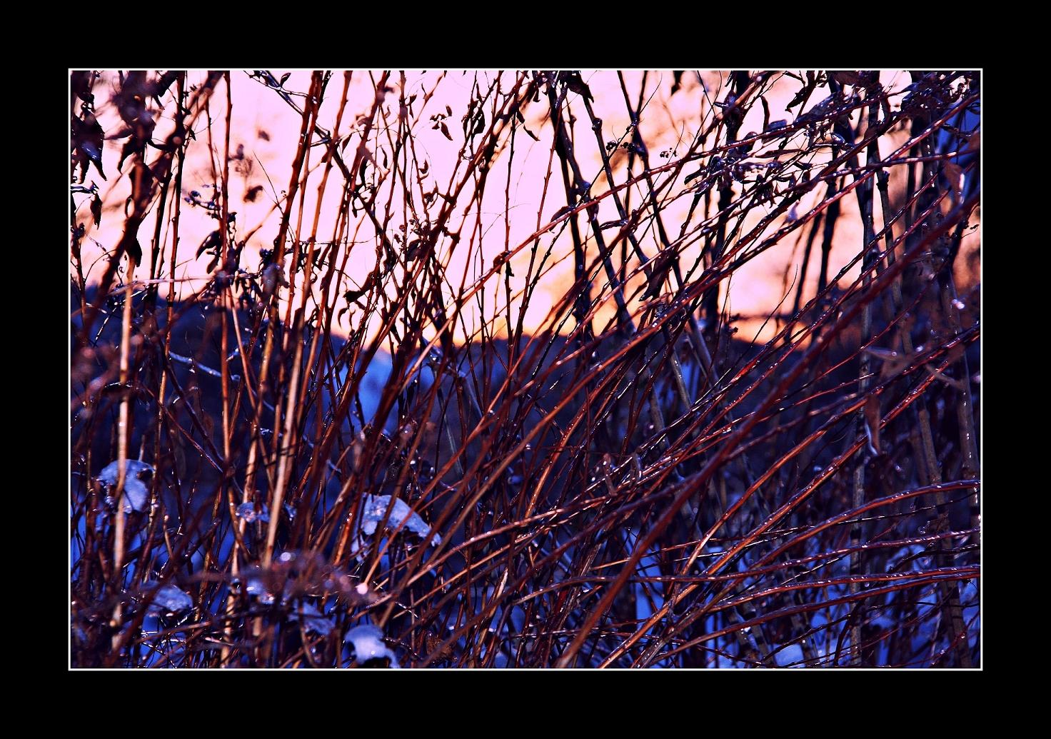 Winterlichter 5