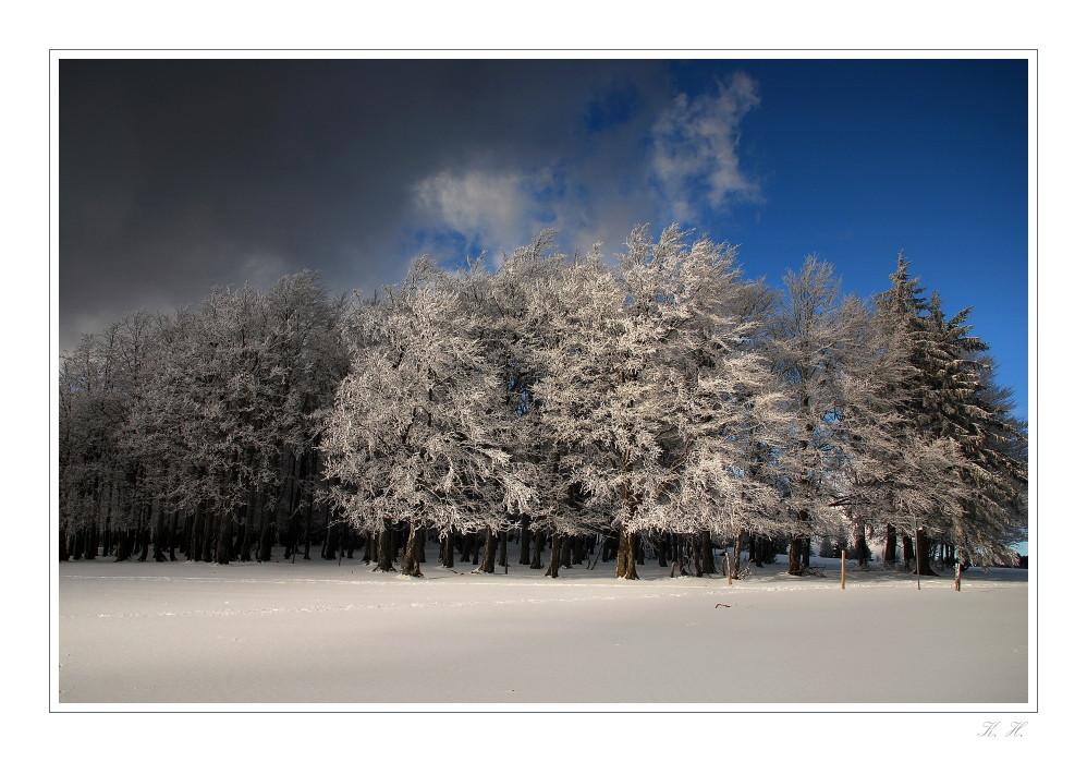 Winterlichtstimmung..