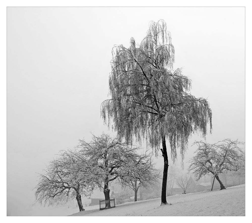 ...wintermärchen. #2..
