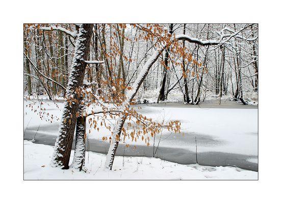 """"""" Wintermärchen """""""