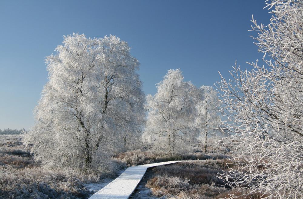 Wintermärchen...