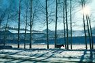 Wintermärchen am Jing Peng Paß