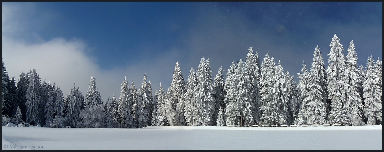 Wintermärchen ...
