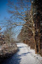 Wintermärchen im Rheinland #4