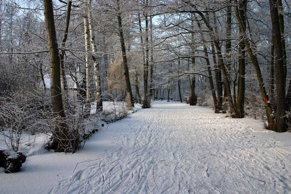 Wintermärchen Spreewald