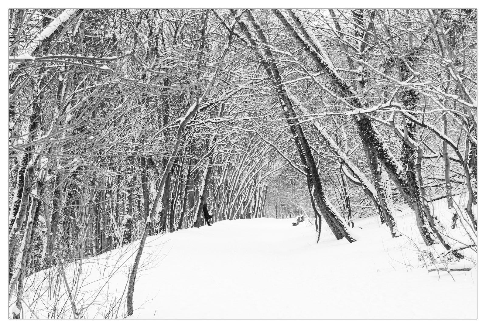 Wintermärchen Teil C
