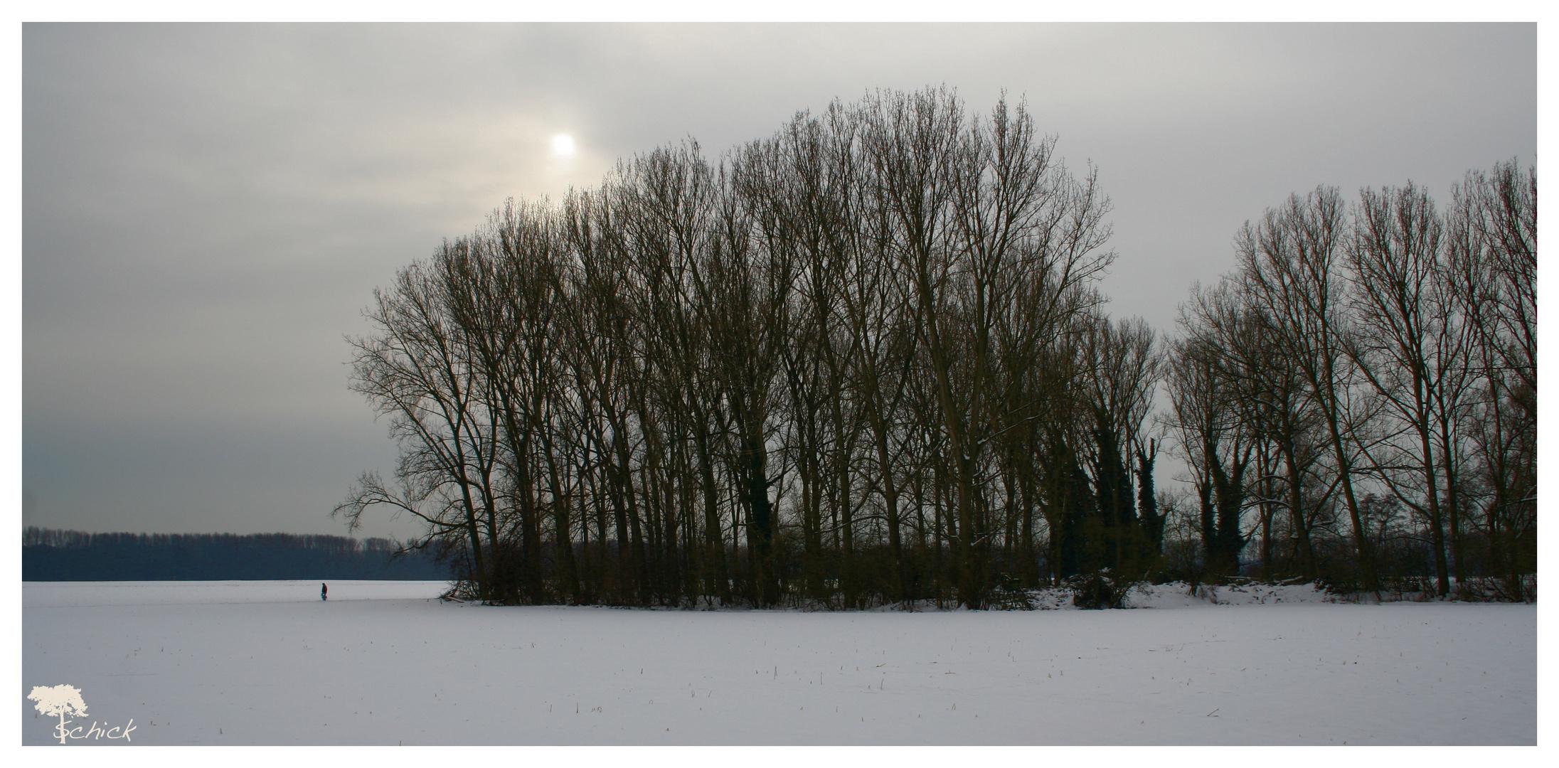 Wintermittag