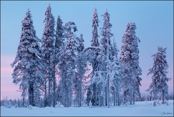 Wintermode