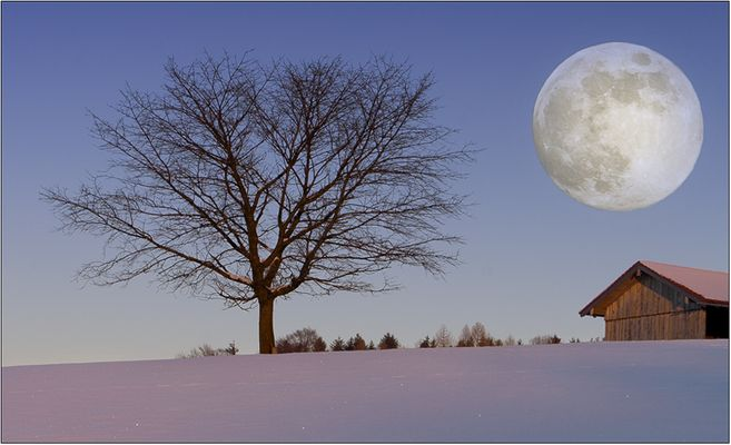 """wintermond"""